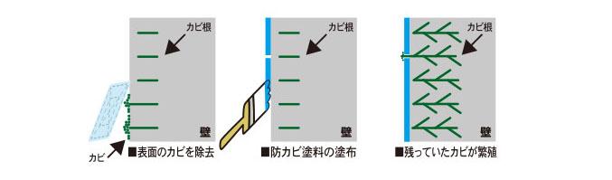 カビ処理工程